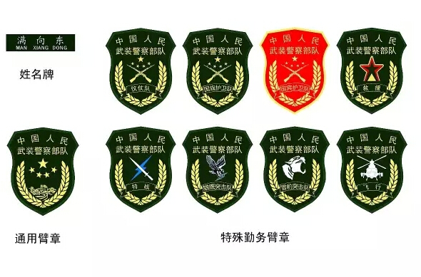 武警部队机关2月29日开始佩戴新式姓名牌,胸标,臂章.图片