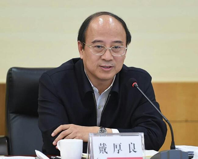 中国最帅最年轻总裁_戴厚良任中国石化副董事长,总裁