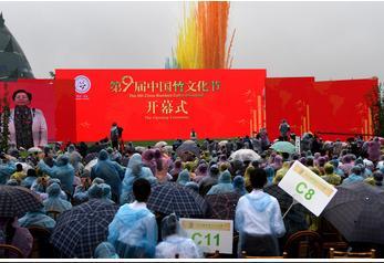 国际人口组织_中国人口新闻