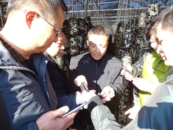 雲南首個擁有自主知識產權的黑木耳菌種誕生